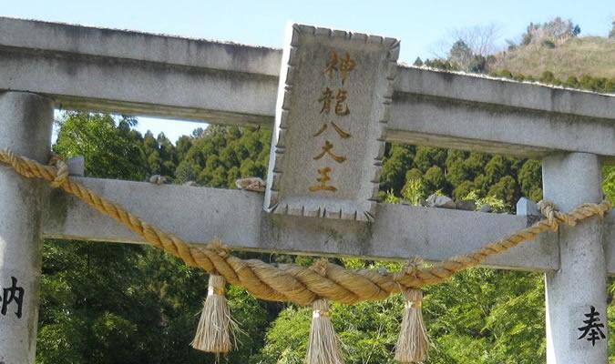 神龍八大龍王神社