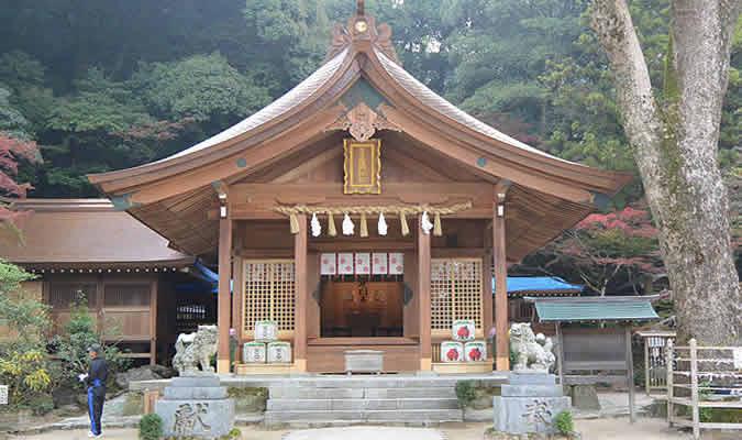 竈門神社(再会の木)
